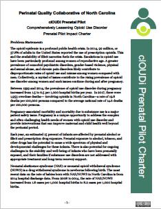 prenatal pilot charter