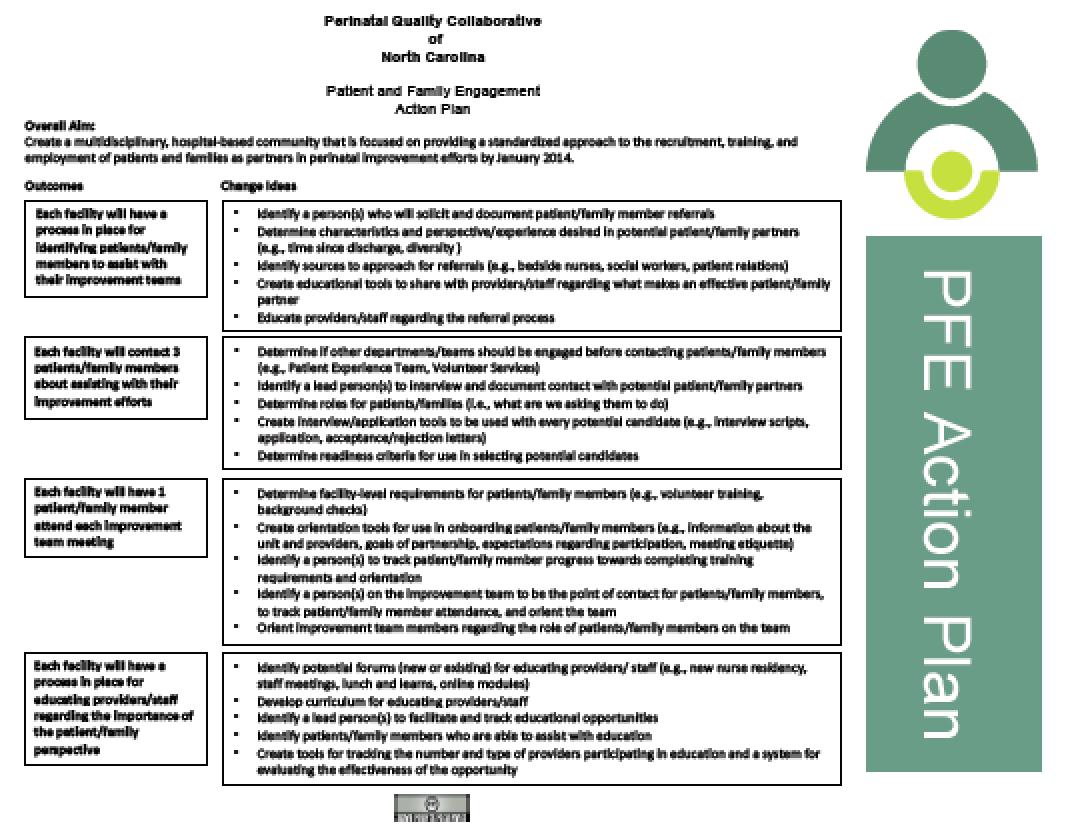 PFE Action Plan image
