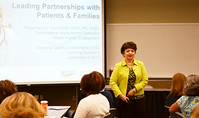 Sue Collier leading partnerships